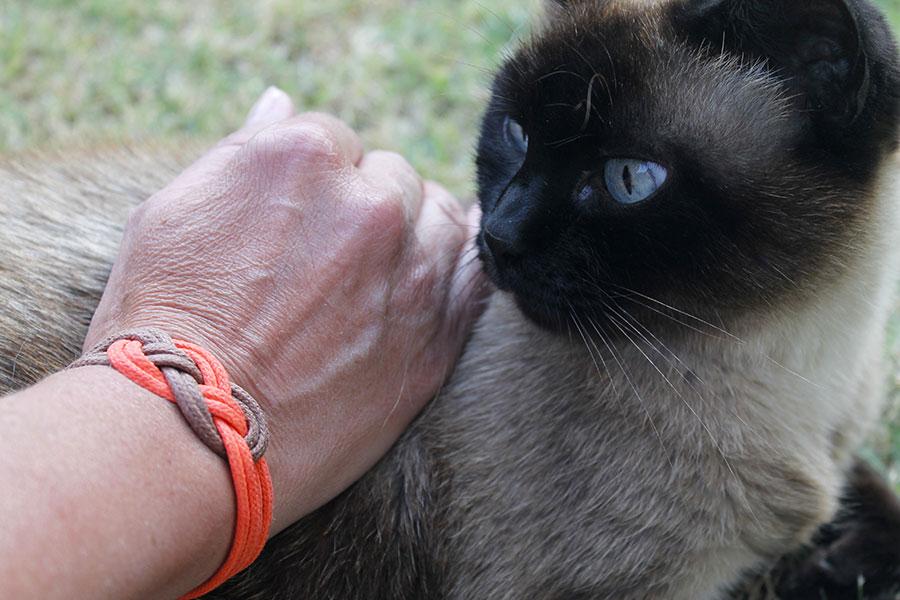 noeud-bracelet