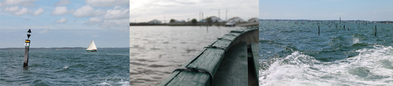 bassin-arcachon